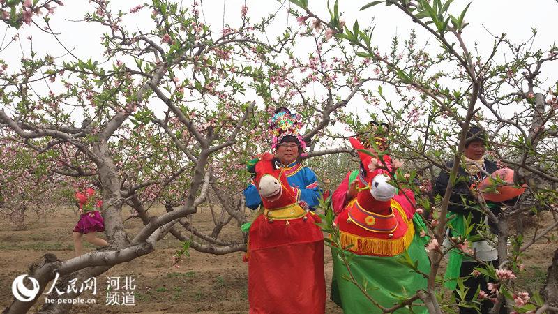 高清航拍 正定(南楼)桃花节 持续到4月17日