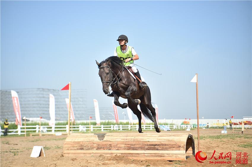 图为京津冀马术比赛在张家口张北县举行。