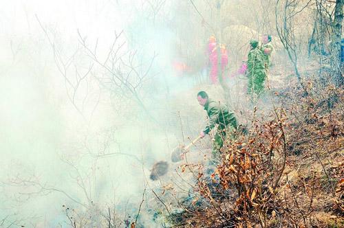 河北抚宁与青龙交界处发生森林火灾